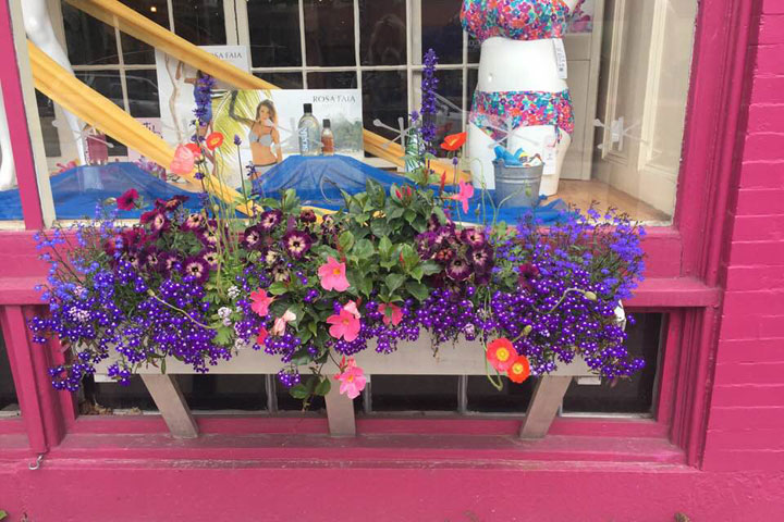 A fun and colorful window box for your home or business